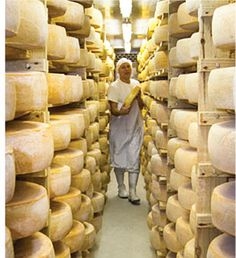 Klein River Cheese Farmstead is a celebration of cheese, picnics and family. We exist to unleash the inner artisan in every one of us. Artisan Cheese, River, Rivers