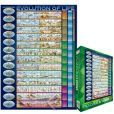 EuroGraphics Puzzles 6000-0080 Evolution of Life