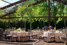 Classic created the atmosphere of an elegant garden party with a 20 meter x 40 meter clear top tent with rustic wood paneling installed around the frame.