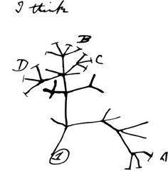árvore da vida Darwin