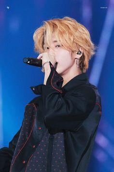 ●Minho is fan, well Jisung in particular. Incheon, Lee Min Ho, K Pop, Baby Squirrel, Lee Know, Ji Sung, Actors, Kpop Boy, K Idols