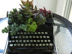 I got the inspiration for this from a display at a local garden center.  It took a while to find an affordable vintage typewriter.