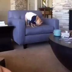 Digging into the perfect spot