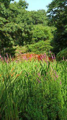 Halla Arboretum Jeju, South Korea