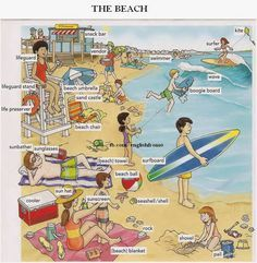 English for beginners: The Beach