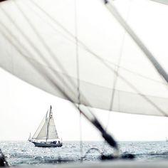 sail away. sail away. Photography Beach, Amazing Photography, Modern Hepburn, Sail Away, Set Sail, Catamaran, Sailing Yachts, Belle Photo, Ponds