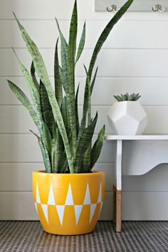 Add a pop of color to your space with this geometric spray painted planter!