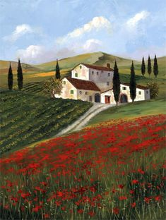 Field of Poppies by H.Hargrove
