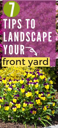 You are trying to find out how to landscape your front yard without breaking the bank. Here are 7 helpful tips to get your landscaping project started. Organic Gardening, Gardening Tips, Family Garden, Helpful Tips, Home Projects, How To Find Out, Landscaping, Yard, Plants