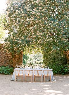 Flowering Trees and Ivy Covered Walls add Natural Beauty to this Sonoma Wine Country Wedding Beauty Loft, Short Bridal Hair, Sunset Palette, Sonoma Wine Country, Vineyard Wedding, Flowering Trees, Beautiful Couple, Reception Ideas, Simple Weddings