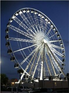 "The city's newest attraction is a giant Ferris Wheel named ""SkyView Atlanta"". Soaring 200 feet above Atlanta's Skyline, SkyView will offer impressive views of Centennial Olympic Park and Downtown Atlanta."