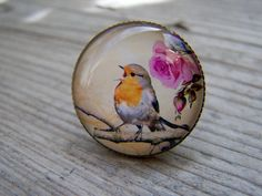 Glass Dome Brass Bronze Vintage Look Bird Ring by gristmilldesigns, $14.95