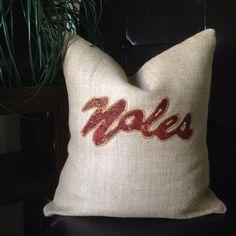 Florida State Seminoles Pillow or Cover. Burlap! $24.99