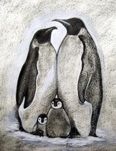 Realistic Drawings This will be my next tattoo Mama Penguin, Daddy Penguin and two baby penguins = my family Art And Illustration, Pinguin Illustration, Penguin Drawing, Penguin Art, Penguin Sketch, Pinguin Tattoo, Animal Drawings, Art Drawings, Drawing Animals