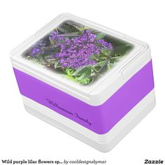 Personalize it with your name! Wild purple lilac flowers spring sage green bush igloo drink cooler