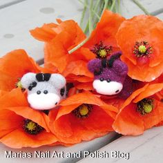 """I picked these beautiful poppies even if I know they do not last more than an hour or two after being picked. The Moo Moos loved them and sang this rhyme: """"Hoppies, poppies, moppies MOO"""" over and over so that now it's stuck in my brain, silly little Moo Moos <3"""