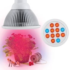Firlar LED Grow Light bulb Lemontec High Efficient Hydroponic Plant Grow Lights system for Garden Greenhouse Indoor and Hydroponic Aquatic12W >>> Continue to the product at the image link.