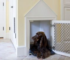 Домик для собаки прямо в стене=)
