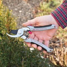 Bypass Pruner/Mini Loppers -$17.95- Prune flowers and cut tree branches with same tool The Bypass Pruner/ Mini Loppers make it easy to complete a variety of tasks in the garden without changing tools. Pruner does a great job of cutting off dead blooms and trimming flowers, but when the tasks grow, so does this tool! Simply push the buttons on both handles and slide down the soft non-slip grips until the handles have almost doubled in size.