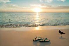 Afbeeldingsresultaat voor beach holiday