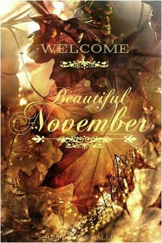 Hello November and farewell September Turkey time soon will be upon us.May this month be kind to us as the. Hello November and farewell September Turkey time soon will be upon us.May this month be kind to us as the. Hallo November, Welcome November, Hello January, November Month, Sweet November, November Tumblr, November Quotes, October Poem, November Pictures
