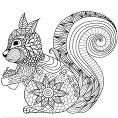 Lovely Squirrel Zentangle coloring page from Zentangle category. Select from 24104 printable crafts of cartoons, nature, animals, Bible and many more.