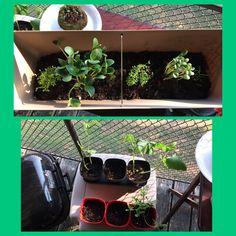 I love gardening! It makes me happy!