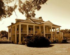 Wallace Louisiana Photograph - Evergreen Sugar Cane Slave Plantation In Wallace Louisiana by Michael Hoard