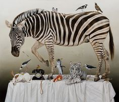 Kate Bergin | Cautionary Tales of Zebras and other Stories
