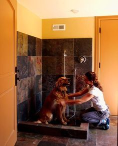 15 tips to create the perfect dog washing station in your home. via Houzz.com #DogBath