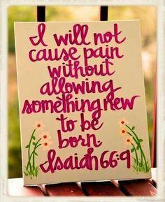 Pain=something new