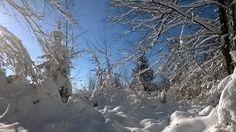 paysage de neige en franche comté 1 er janvier 2015