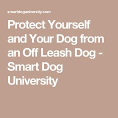 Protect Yourself and Your Dog from an Off Leash Dog - Smart Dog University
