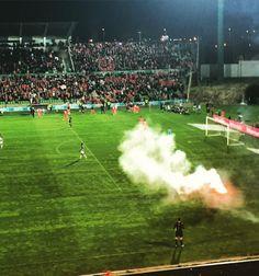 (94) Benfica - Busca do Twitter