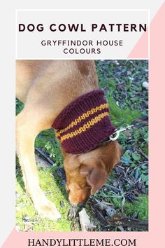 Dog cowl pattern free. Make your dog a Gryffindor scarf with this easy free knitting pattern. The cowl uses the Harry Potter Gryffindor house colours and could easily be adapted for a human to wear! Free Knitting, Knitting Patterns, Knitting Projects, House Colors, Cowl, Your Dog, Free Pattern, Berlin, Colours