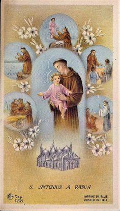 Saint Anthony Of Padua, Catholic Pictures, Prayer Cards, Palermo, San Antonio, Vintage World Maps, Saints, Prayers, Christian