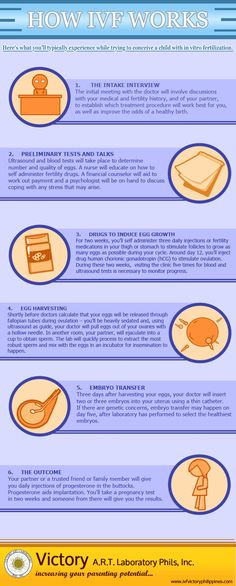 This is how IVF works.     SOURCE URL: http://www.ivfvictoryphilippines.com/blog/2013/01/08/how-ivf-works-infographic/