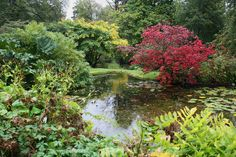 IMG_6068 | by gdldds  Gardens at Clan Donald's Armadale Castle