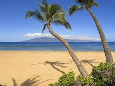 The top ten most popular things to do on Maui. Great ideas for Maui activities and the best things to do for visitors. Insider tips from a local resident. Maui Hotels, Maui Resorts, Hotels And Resorts, Luxury Resorts, Maui Travel, Travel Tips, Maui Accommodation, Maui Activities, West Maui