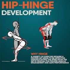 🔥HIP-HINGE DEVELOPMENT ✅How is your hip hinge, are you able to dissociate your hip movement form spine? Watch yourself in a mirror and try to bend forward only at the hips, observe if you're able to do that while keeping a neutral spine. If you're not able to, it will be beneficial for you to … Psoas Muscle, Muscle Body, Hip Replacement Exercises, Hip Mobility Exercises, Stretching Exercises, Dynamic Stretching, Ultimate Workout, Morning Yoga, Yoga Routine