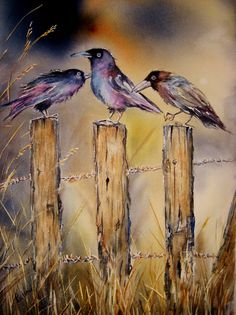 Gossip Girls raven art original watercolor bird by TivoliGardens