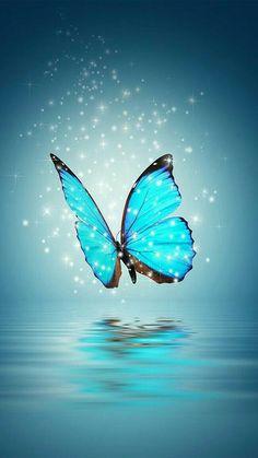 Aesthetic Background iPhone Wallpaper Butterfly in 2020 Blue Butterfly Wallpaper, Cute Galaxy Wallpaper, Butterfly Background, Glitter Wallpaper, Love Wallpaper, Colorful Wallpaper, Apple Wallpaper, Landscape Wallpaper, Scenery Wallpaper