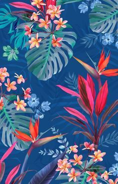 Flowers wallpaper backgrounds tropical prints ideas for 2019 Trendy Wallpaper, Tumblr Wallpaper, Cute Wallpapers, Wallpaper Backgrounds, Iphone Wallpaper, Floral Wallpapers, Iphone Backgrounds, Interesting Wallpapers, Wallpaper Designs