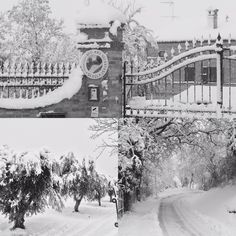 Warme chocomel weer....  17-01-2017  Montefano la Vecchia Scuola #montefano #2017 #nevica #LaVecchiaScuola #bedandbreakfast #sneeuw #italy #vakantie