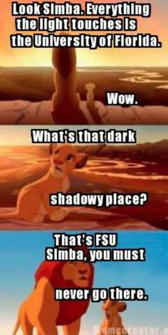 Two of my favorite things! UF AND THE LION KING!!