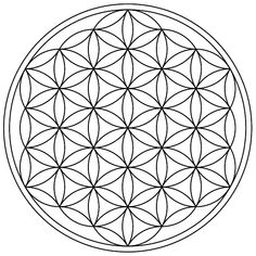 http://upload.wikimedia.org/wikipedia/commons/3/32/Flower-of-Life-19circles36arcs-enclosed.png