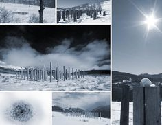 The Array | 2014 | Photo Collage  [STRANG] Architecture