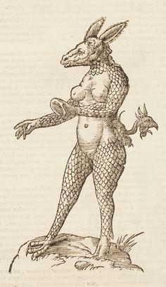 Monstrum capite afinino             Monstrorum Historia,          (Bologna, 1642)        Author: ALDROVANDI, Ulisse (1522-1605)