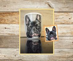 hand painted Porcelain Mugs, Dog Portraits, Chihuahua, French Bulldog, Hand Painted, Dogs, Animals, Animales, Animaux