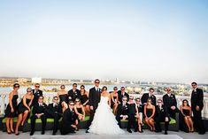 Gorgeous Wedding Party Photo from our Sky Terrace.